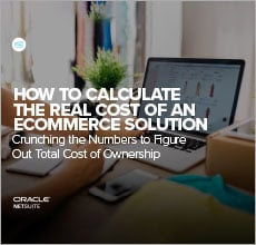 Calculating the Real Cost of an Ecommerce Solutiont