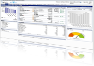 Embedded Real-Time Insights for Your Custom Applications